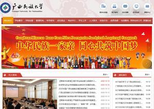 广西民族大学网站建设